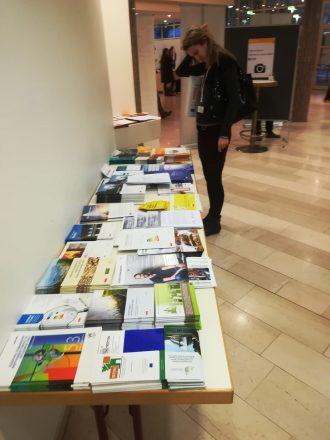 HOLISDER promoted on MOEEBIUS final conference: WSED 2019